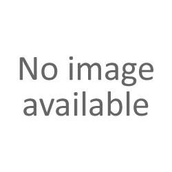 Atomic Redster 10 Race Poles